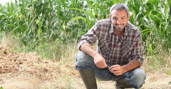 farmer by cornfield